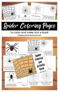Printable Spider Coloring Pages to Color & Make into a Book