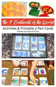 The 7 Continents of the World ~ Activities & Free Printable 3-Part Cards