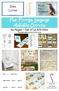 Fun Foreign Language Activities Overview ~ Set of 13 ~ 65 Pages