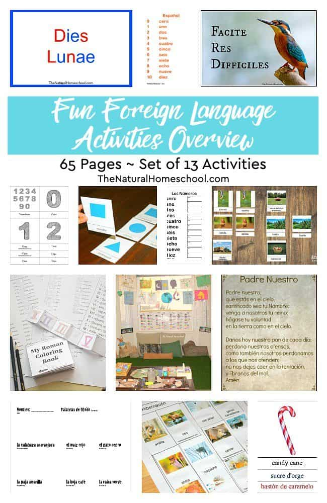 In this wonderful post, you will be able to find the best way learn foreign language for kids: a preview of foreign languages! Come and take a look at these 13 Foreign Languages Activities.