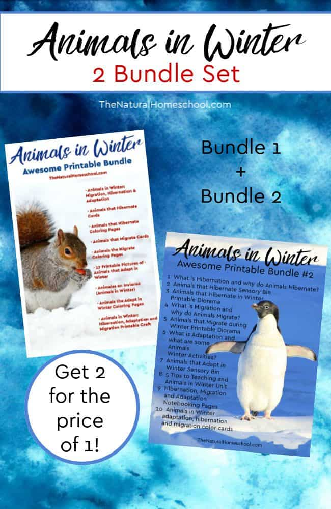 I have put together this amazing set with over 100 pages. Come take a look at how awesome these Animals in Winter duo bundle is! Get both bundles together and get 2 for the price of one!