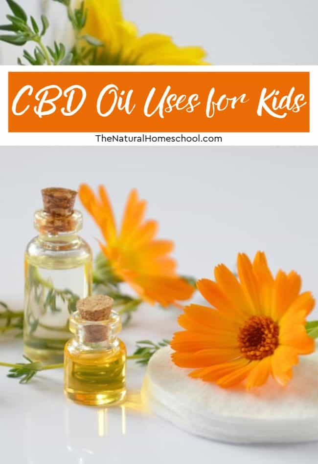 There are many different CBD oil uses for kids, the same as it can be used for different things with adults. If you want to use CBD on your kids, it makes sense to gain some information first.