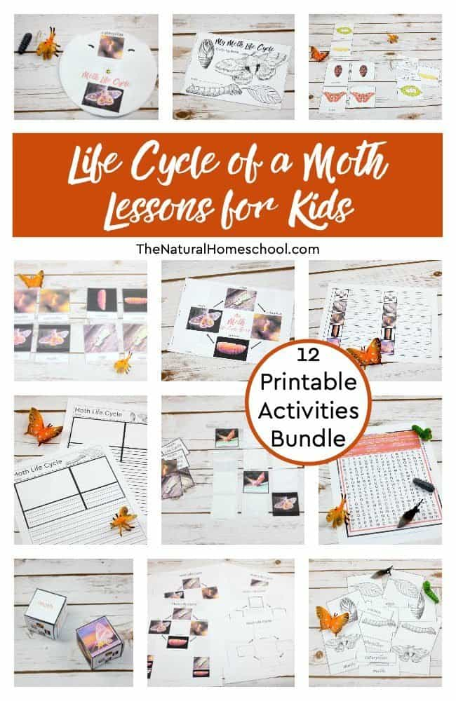 Have you been looking for awesome and educational moth life cycle craft ideas that kids can make to learn more about metamorphosis? If so, then this is the bundle for you!