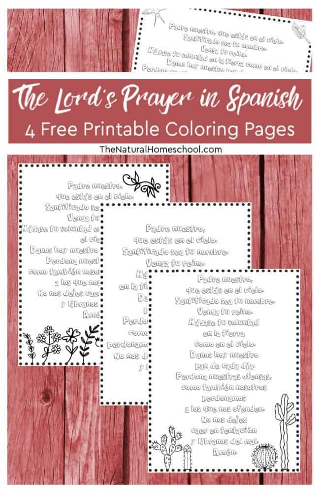 picture regarding Free Printable Coloring Pages on Prayer called 4 No cost The Lords Prayer within Spanish Printable Coloring Internet pages
