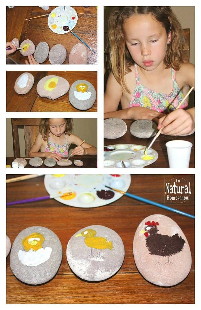 The stages of chicken are eggs, hatchlings, chicks, adolescent chickens and adult chickens. In this post, we will learn how to make a colorful chicken life cycle craft with kids.