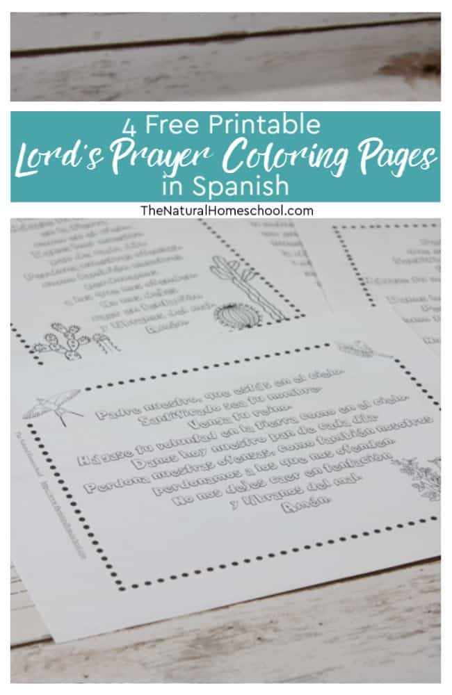 photo regarding Pledge of Allegiance in Spanish Printable called 4 Free of charge Printable Lords Prayer Coloring Web pages inside of Spanish