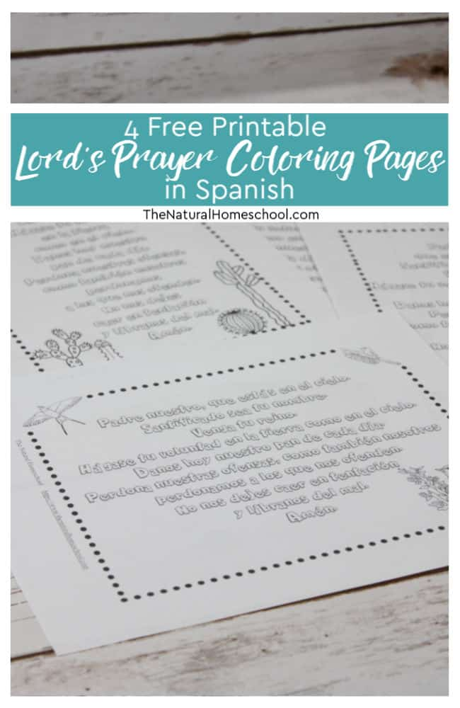 Free Coloring Pages for Sunday School Pic Bible Spanish Coloring ... | 1000x650
