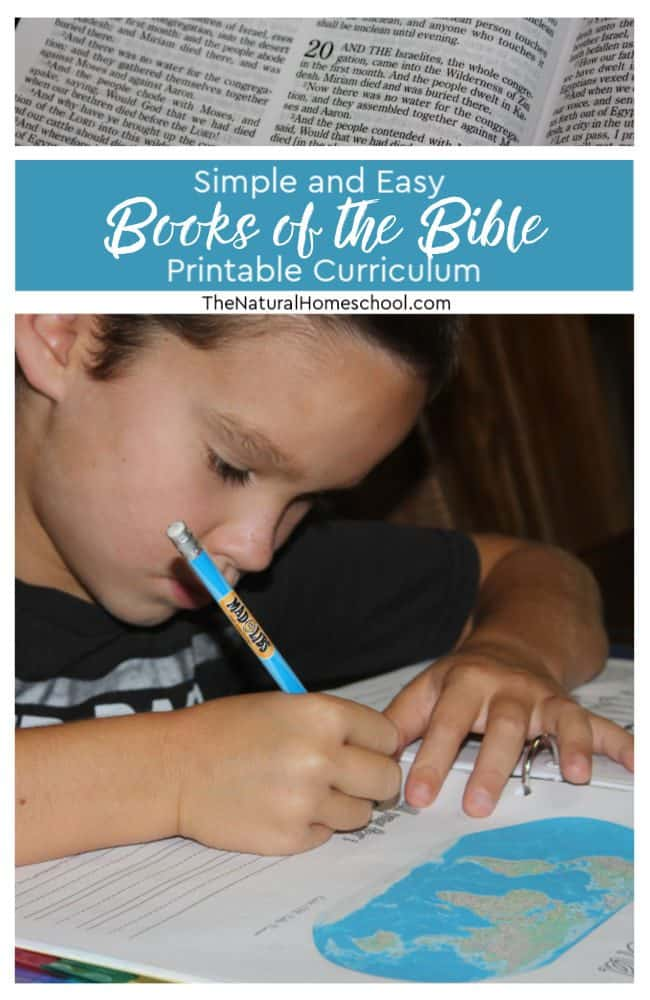 I must admit, this is the best list of simple and easy books of the Bible printable curriculum ideas that I have found! You will love it!