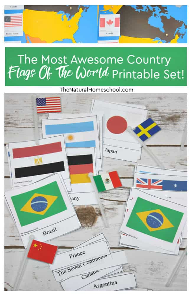 In this post, you will actually experience an amazing lesson with your kids! We did in our homeschool, so we will be sharing it with you. It is about the flags of the world pictures to print.