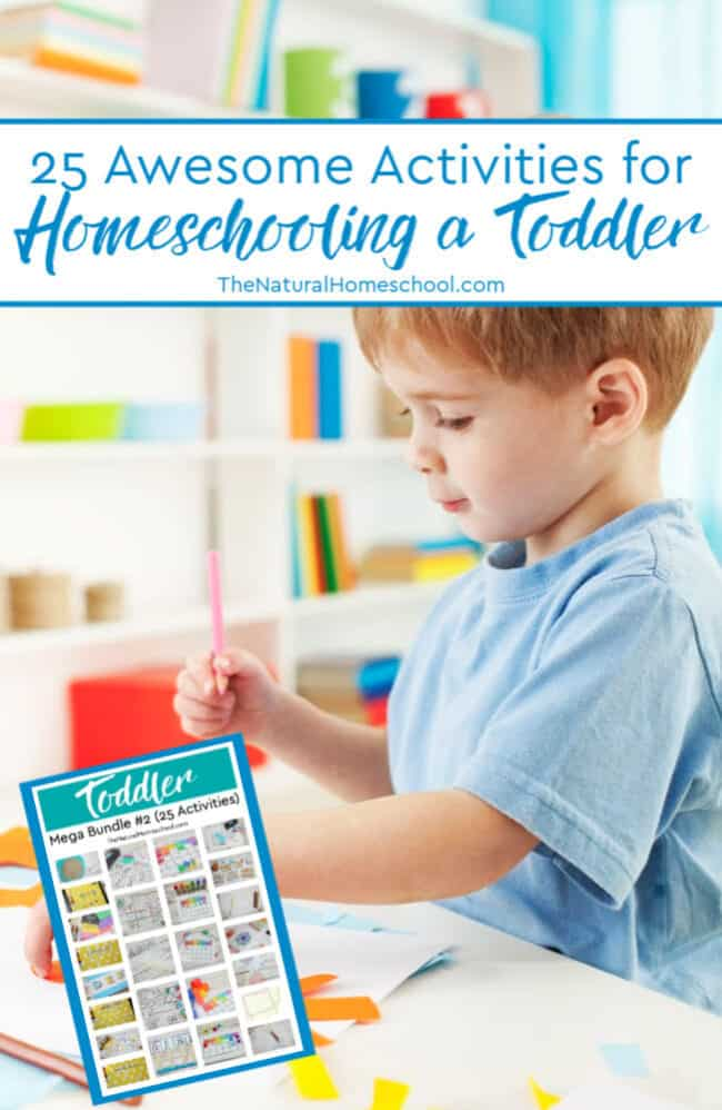 Homeschooling a toddler can be as easy or as complicated as you choose for it to be. What is important is to keep the delicate balance between independence and a little bit of hand-holding.