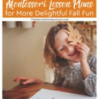 Delightful Montessori Lesson Plans for More Fall Fun