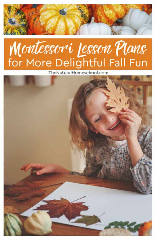 In this post, we will share with you a list of delightful Montessori lesson plans to fill your Fall season with learning fun!