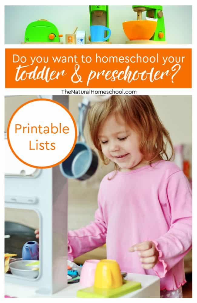 Do you want to homeschool your toddler & preschooler_ {Printable}