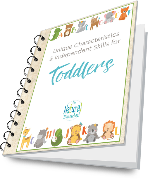 Toddler lead magnet 3D book