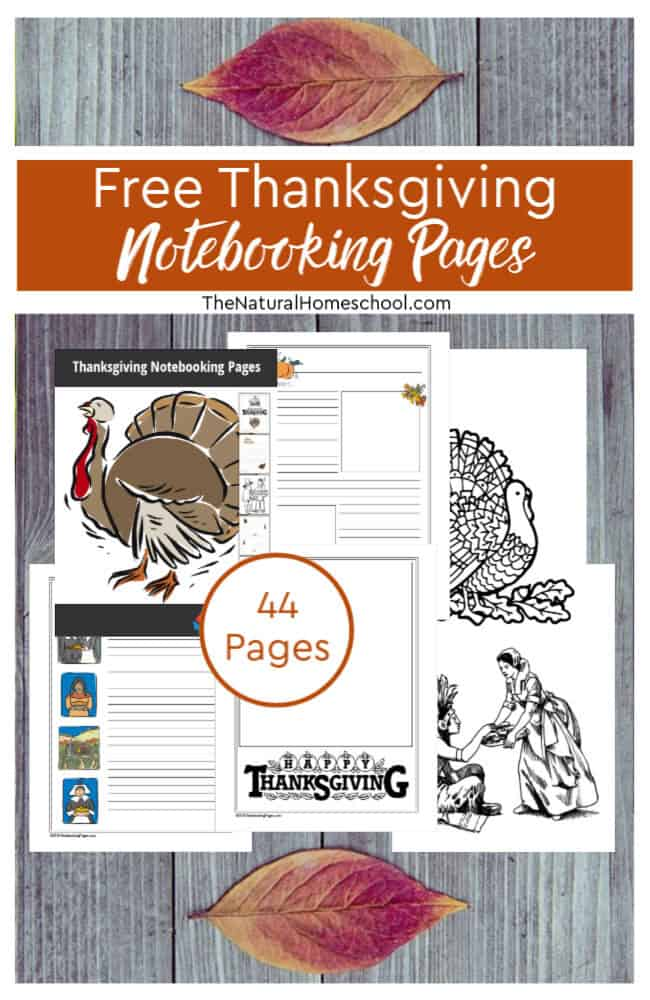 Come and take a look at how you CAN incorporate the holidays into your homeschooling day with these free Thanksgiving notebooking pages!