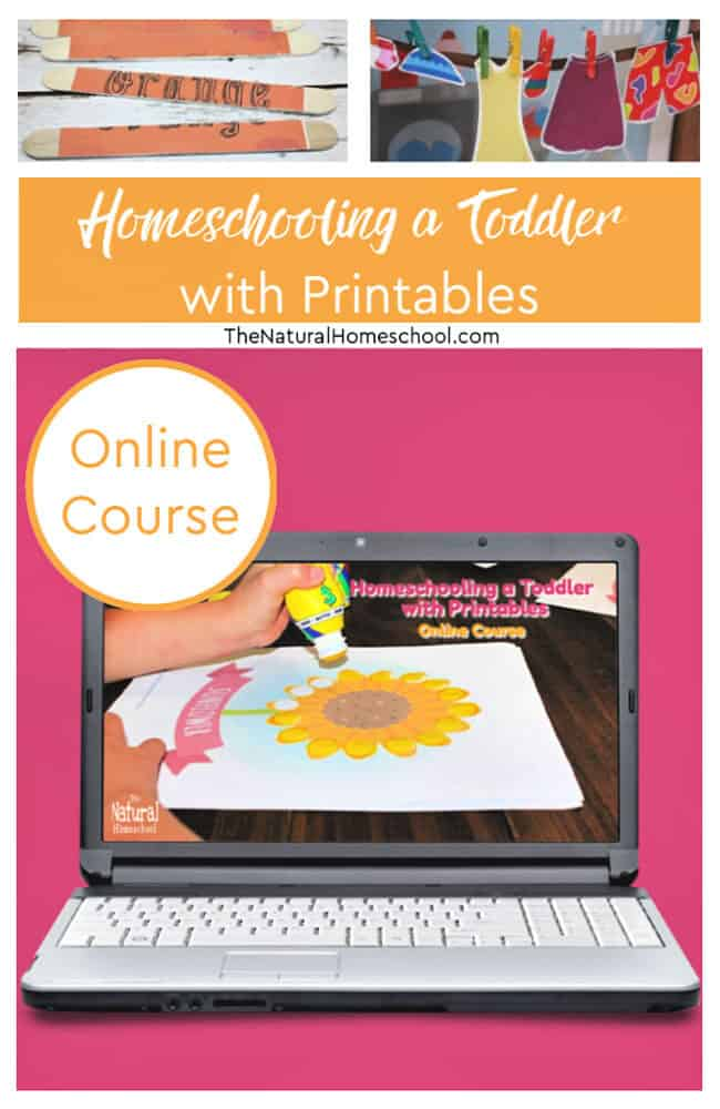 Homeschooling a toddler can be hard sometimes. But it doesn't have to be! Join this awesome course to show you how!