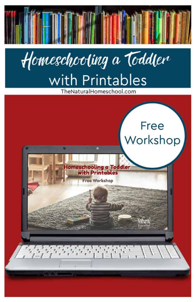 Homeschooling a toddler can be hard sometimes. But it doesn't have to be! Join the free workshop to show you how!