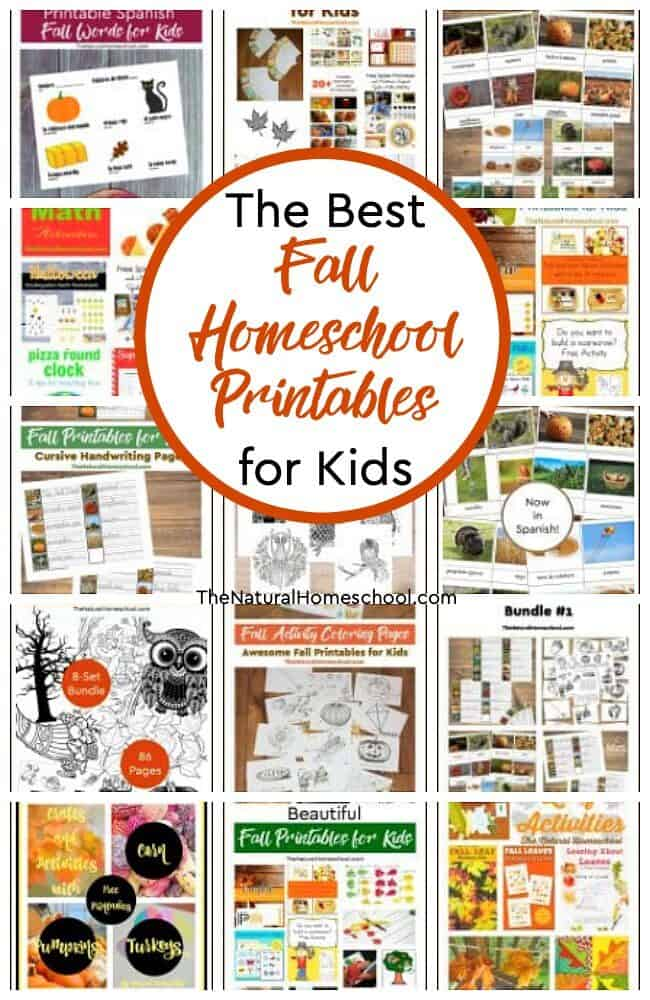 Here, you will find the best Fall homeschool printables that we have around our entire site! Your kids will love them while they have fun learning about Fall!