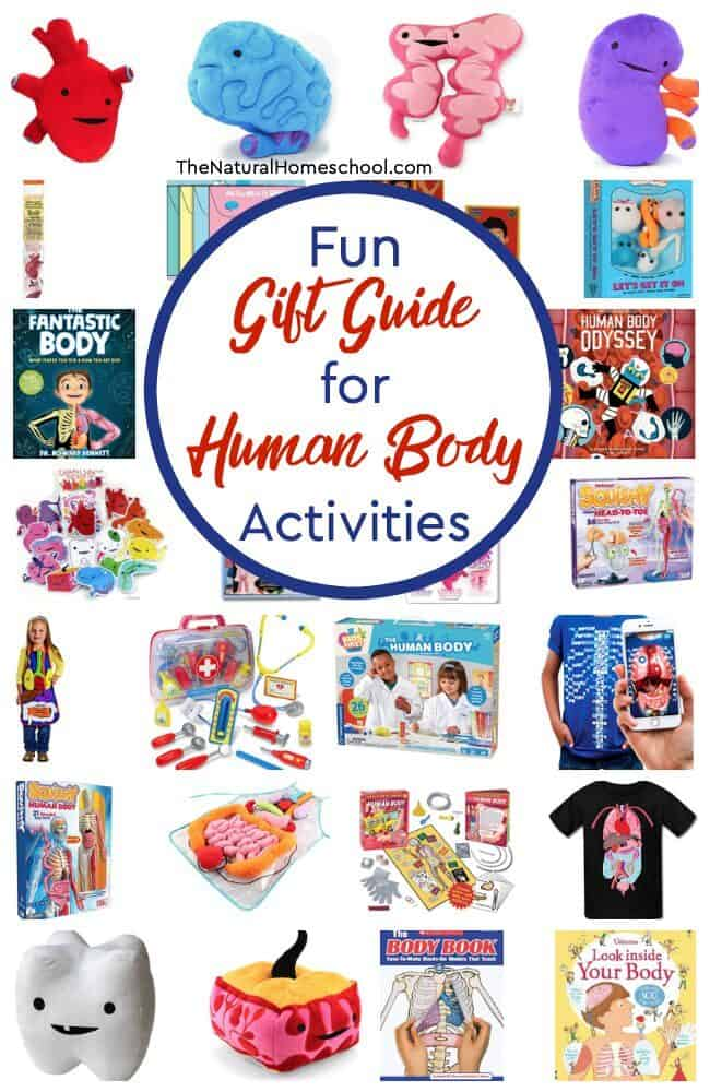 Come and take a look at our super amazing Homeschool Gift Guide for Human Body Activities that will make your teaching easier and that your kids will love!