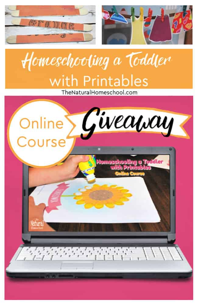 Do you want to try this online course? Then head down below to enter for a chance to be one of three winners of this online course! But hurry! This giveaway with 3 winners is open 11/19-11/26! The 3 winners will be announced 11/27!