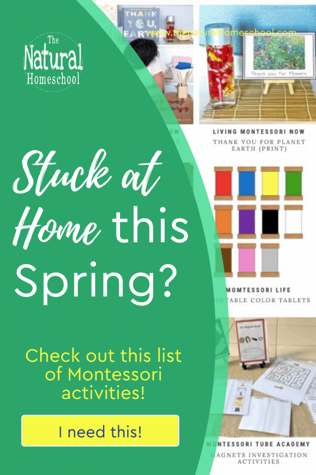 Come and take a look at everything you can get to do with your children or in the Montessori environment this Spring.