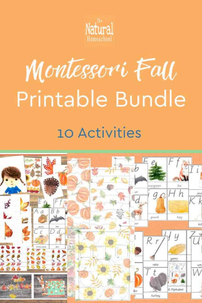 Fall is around the corner and you need to be ready with some really awesome activities for your kids! It's our favorite season and you can make it extra special with these 10 Fall Montessori printables for kids!