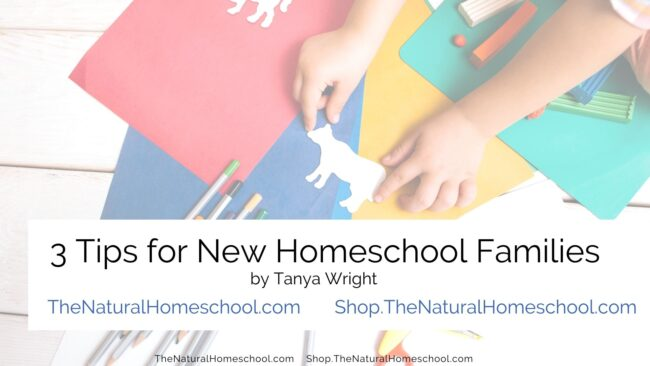 Here are some wonderful tips to help you boss homeschooling your autistic child.