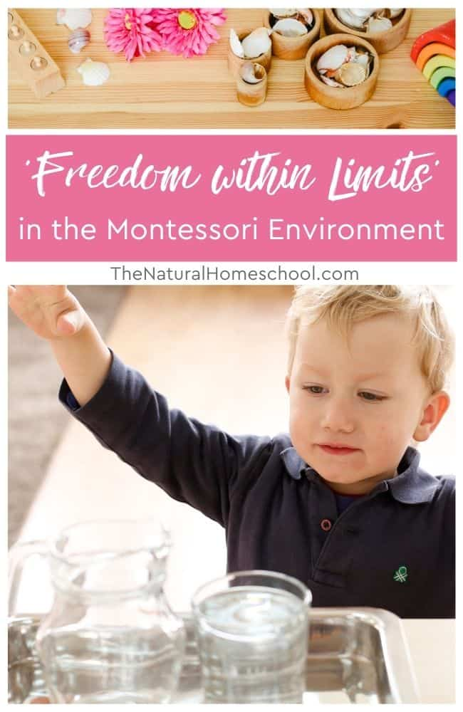 Come and find out how freedom within limits works for discipline in children.