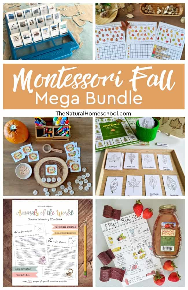 The MONTESSORI FALL MEGA BUNDLE is now HERE!