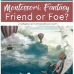 Come and decide if, after you read and watch, you think whether Montessori is a fantasy friend or foe.