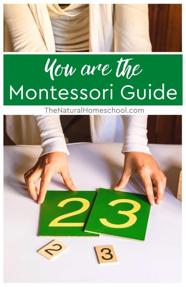 Today, we're going to be talking about you being The Montessori Guide, what that means and what you can expect to take on as your responsibilities.