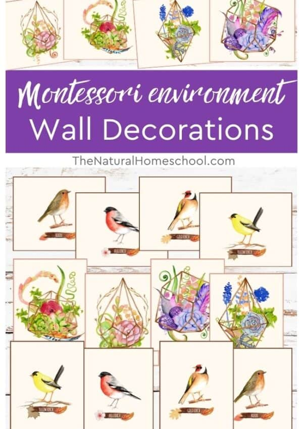 Are you wondering how to decorate your Montessori environment that align with the Montessori principles? Then you can't miss this training!