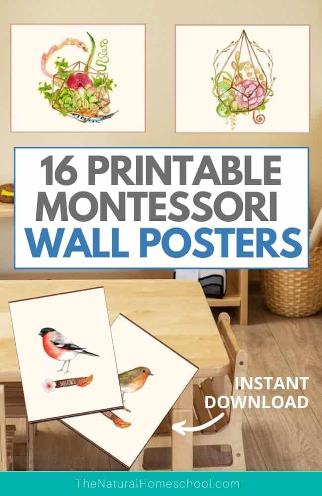 Come and find out just how beautiful your Montessori environment or homeschool room can look by getting these 16 beautiful wall decorations!
