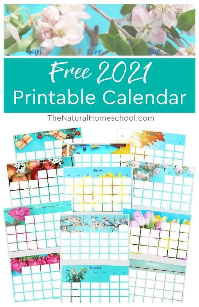Whether you have young children or kids all the way in high school, you CAN organize your homeschool with the right resources.