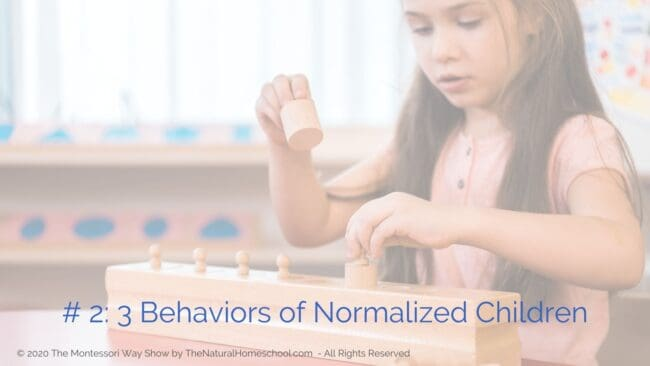 In this episode, let's discuss what Montessori normalization is, why it is important, what are some typical behaviors of normalized children and what are some things that you can do to help shortcut normalization in the children you work with.
