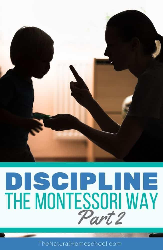 Discipline, even Montessori discipline, can be a pretty touchy topic, but it must be talked about, right? In this post, let's dive deeper into the very important topic of discipline.