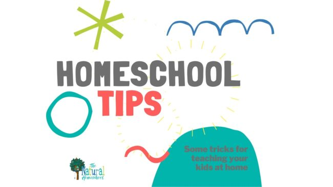 In this training, we are going to focus on 9 important tips for teaching at home that will help you so much today.