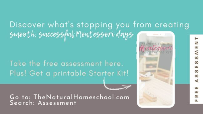 Are you wondering where you are in your Montessori journey and how to know where you go from here? This guidance will not only be eye-opening for you, but it will give you a sense of direction.