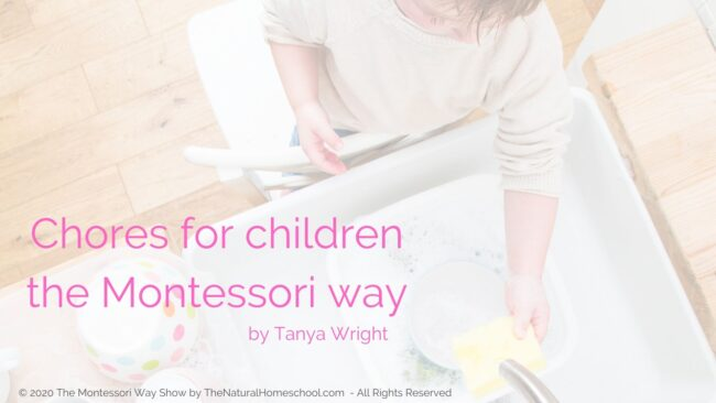 In this training we will answer an essential question: Why are Montessori sensorial works so important for children? This is so you can gain a better understanding of this fantastic subject when you implement it in your Montessori environment.