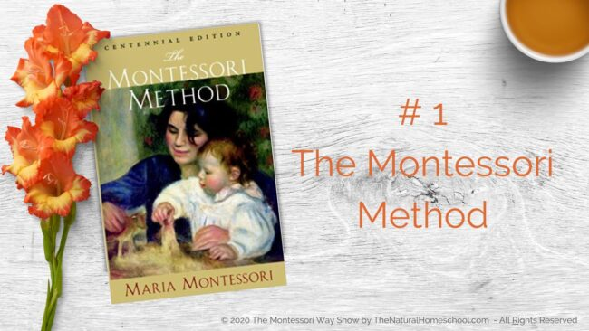 In this training, we will be talking about 3 of the best Montessori books that you MUST have and why!