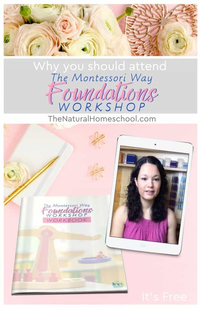 In this training, we will be discussing why you should attend The free 5-day Montessori Way Foundations Workshop.