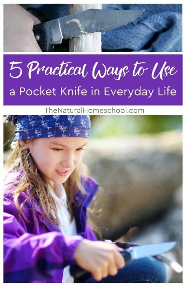 An everyday pocket knife, a foldable knife with the blade inside the handle, is compact enough to fit inside your pocket without accidentally injuring yourself.