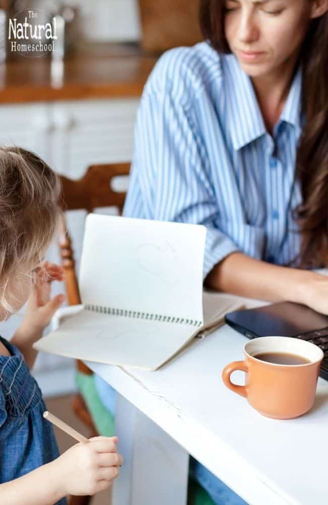 Here are some of the ways in which you can make some money as you homeschool your children.