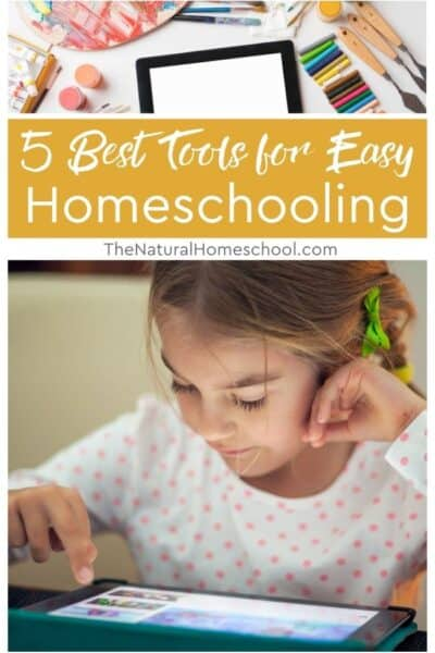 Today, we'll happily share with you a list of wonderful tools for easy and enjoyable homeschooling.